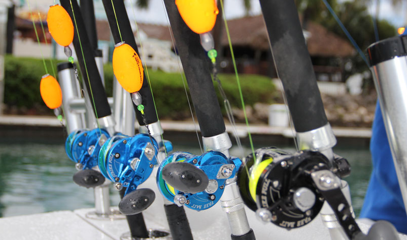 Boating focused crazy about boating for Bottom fishing reels